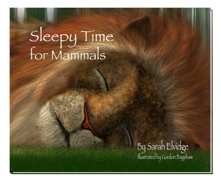 NEW BOOK: Sleepy Time for Mammals