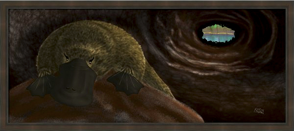 The Sleeping Duck-billed Platypus Painting this little guy was a treat for me. After much research, I discovered that there were practically no resources which showed the Platypus in its restful habitat, up close and personal. So it was a real adventure to create his environment with no visual reference.
