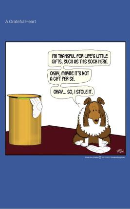 Frodo the Sheltie dog comic strip: Frodo is thankful all the things he has, including the things that are not his.