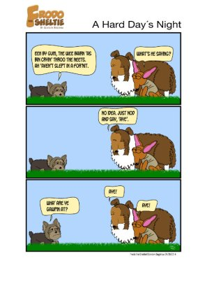 Frodo the Sheltie dog comic strip: Frodo and Nina are trying very hard to listen to their new friend Luke, but he's a little difficult to understand