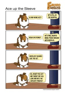 Frodo the Sheltie dog comic strip: Gord needed to go to the hospital, and Frodo is trying to figure out how Raquel got him to go.