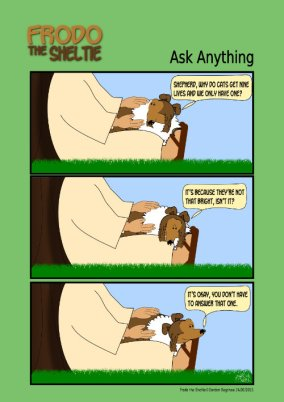 Frodo the Sheltie dog comic strip: Frodo is asking the LORD why cats have 9 lives.