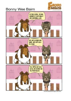 Frodo the Sheltie dog comic strip: Frodo is visiting Luke's new human sister. Luke is happy but also worried that she'll get all the treats now.