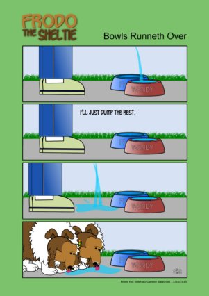 Frodo the Sheltie dog comic strip: Gord fills the bowls with water a dumps the rest on the ground, and the dogs drink from the ground
