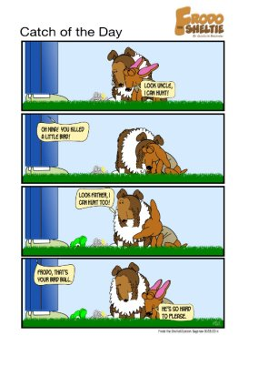 Frodo the Sheltie dog comic strip: Gord, Nina and Frodo are standing outside in the yard. Nina has brought a dead bird as a gift for Gord. Frodo brings his bird chew toy as a gift. He doesn't want to be left out.