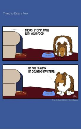 Frodo the Sheltie : Dropping a Few