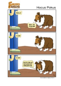 Frodo the Sheltie : Hocus Pokus