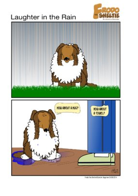 Frodo the Sheltie : Laughter In The Rain