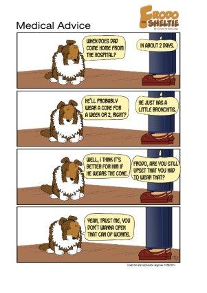 Frodo the Sheltie : Medical Advice
