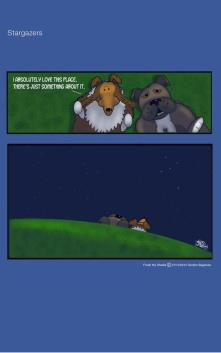Frodo the Sheltie : Stargazers
