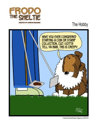 Frodo the Sheltie : The Hobby