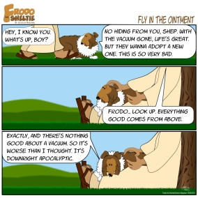 Frodo The Sheltie : Fly in The Ointment